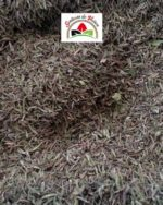 feuilles de thym en vrac pour la cuisine et infusion