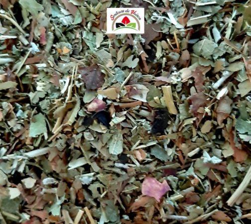 mélange de plantes coupées pour la ménopause