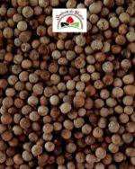 poivre grains blanc appelé Birdy du cambodge