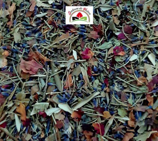 mélange de plantes de Provence pour infusion