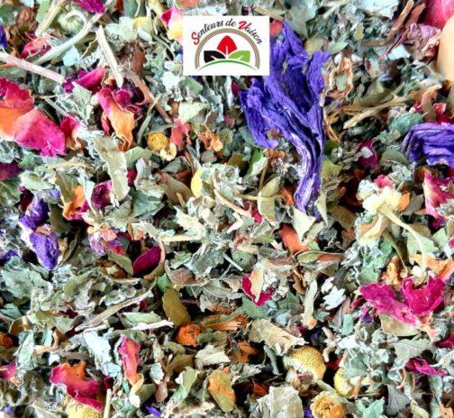 mélange de plantes coupées et de fleurs pour infusion contre la gastro