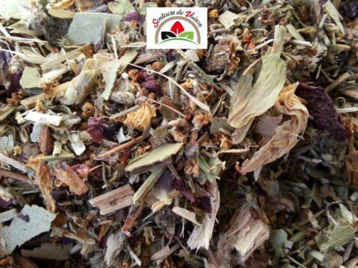 tisane de plantes pour la toux